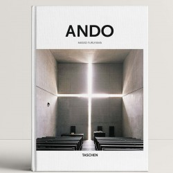 Basic Architecture - Ando